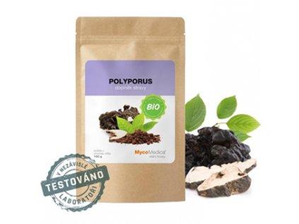 polyporus choros prasek
