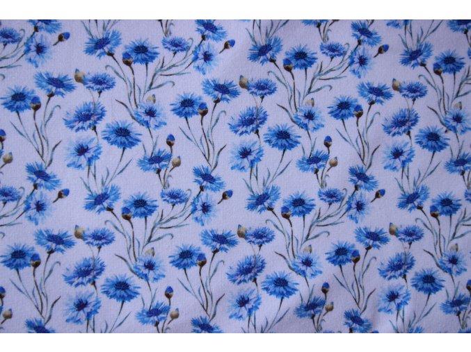 bavlněný úplet modré chrpy