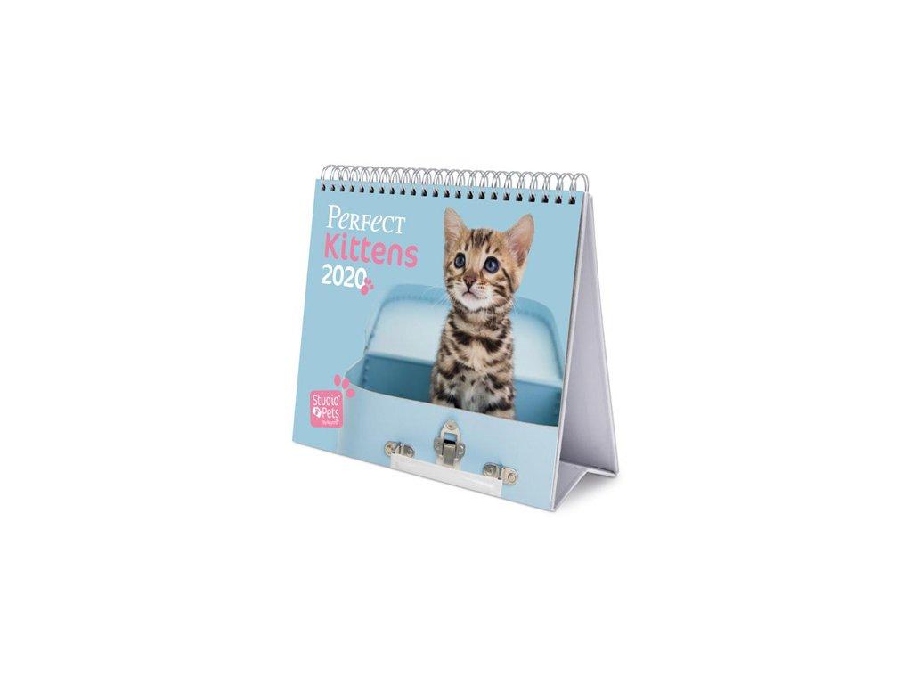77225_kalendar-2020-stolni-zvirata--cats--20-x-17-cm