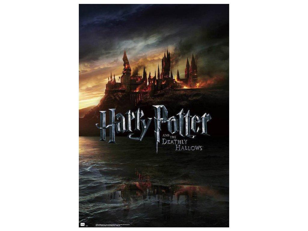 Plakát Star Harry Potter: Deathly Hollows (61 x 91,5 cm) 150g