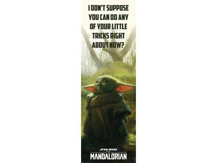 Plakát na dveře Star Wars|Hvězdné války: TV seriál The Mandalorian Specialní triky (53 x 158 cm)