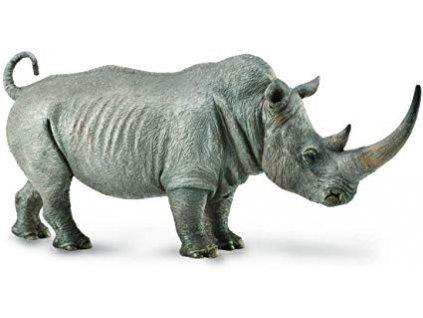 Nosorožec