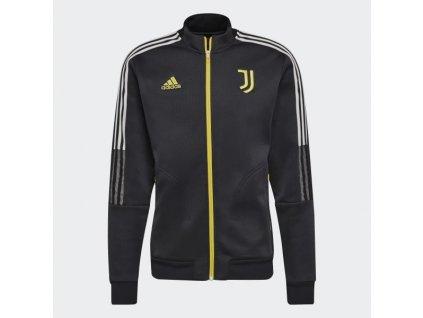Pánská bunda Juventus Turín 21 Anthem