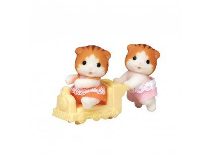 Dvojčata Javorové kočky
