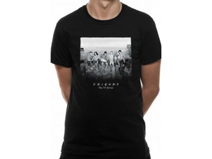 Pánské tričko Friends/Přátelé Skyscraper