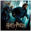 Kalendář 2021 s plakátem: Harry Potter (30 x 30|60 cm)