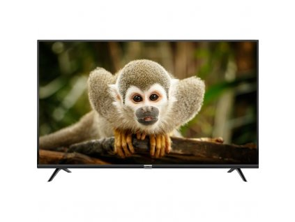 Televize TCL 43DP600