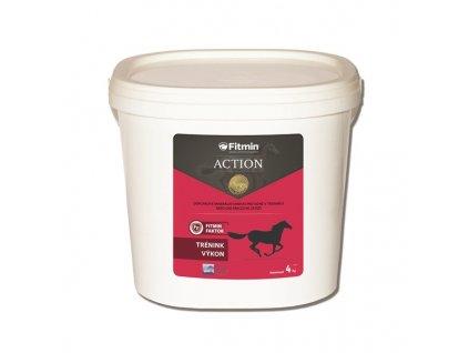 Krmivo FITMIN Horse ACTION 2 kg