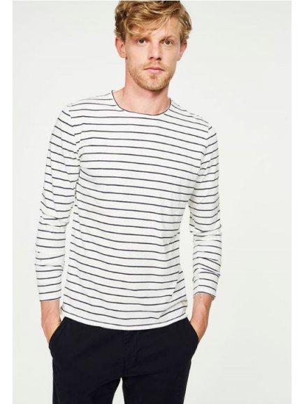 domian stripes 1