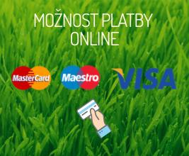 platba kartou online