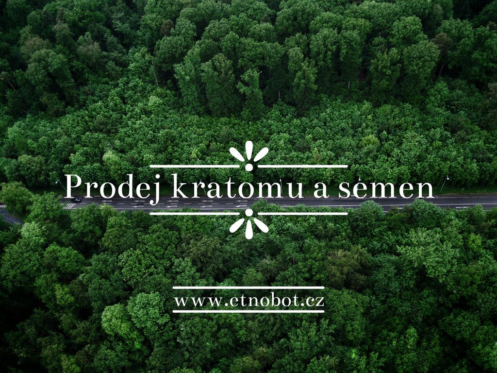 prodej_kratomu_a_semen
