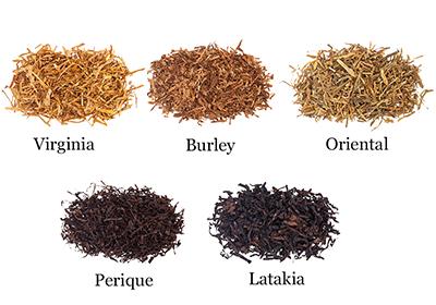 Tabákové druhy