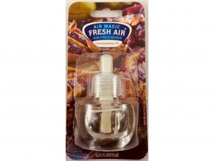 Fresh Air Elektrická náplň Babičkin koláč 19 ml