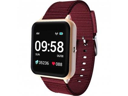 Lenovo Smart Watch S2 Gold LENOVO     11e99