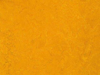 Marmoleum HOME H32  2m šíře