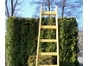 Drevené rebríky