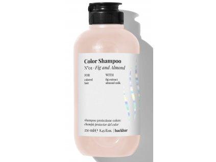 color shampoo 250ml N°1