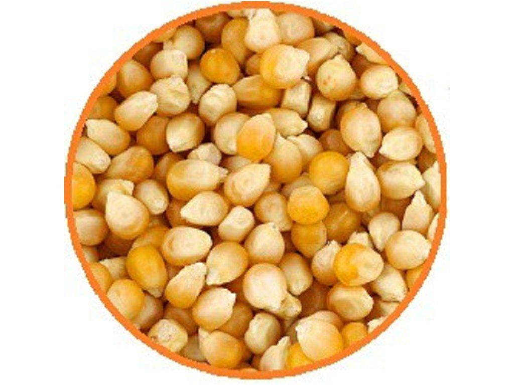 vazeni kukurice 768