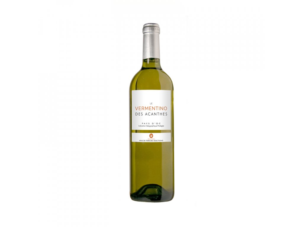ACANTHES VERMENTINO