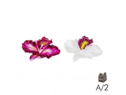 Svíčka Daffodil