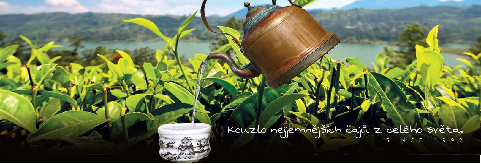 Čaje a byliny