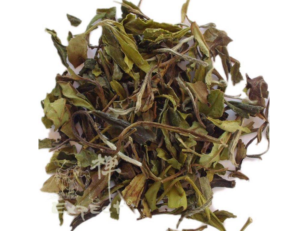 Bílý čaj china Fujian Fuding Pai Mu Tan superior grade