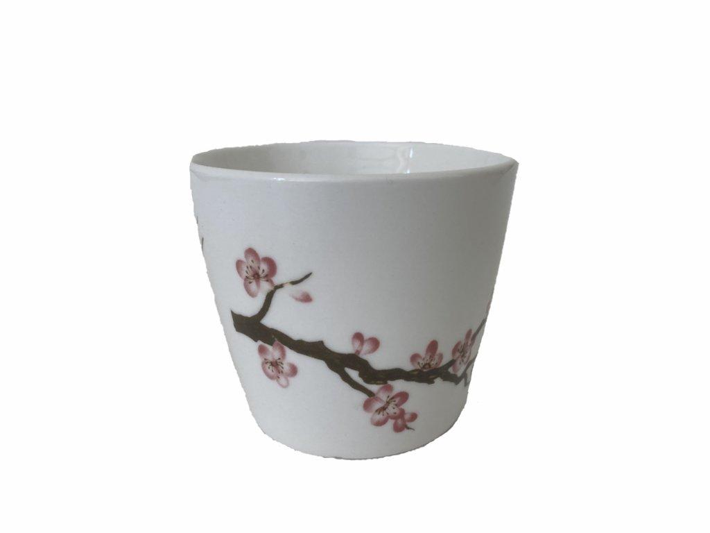 kalíšek sakura