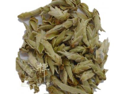 Zelený čaj Yunnan Wild Tea Buds