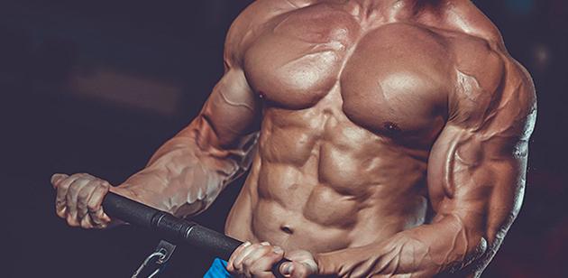 Nabírání svalové hmoty