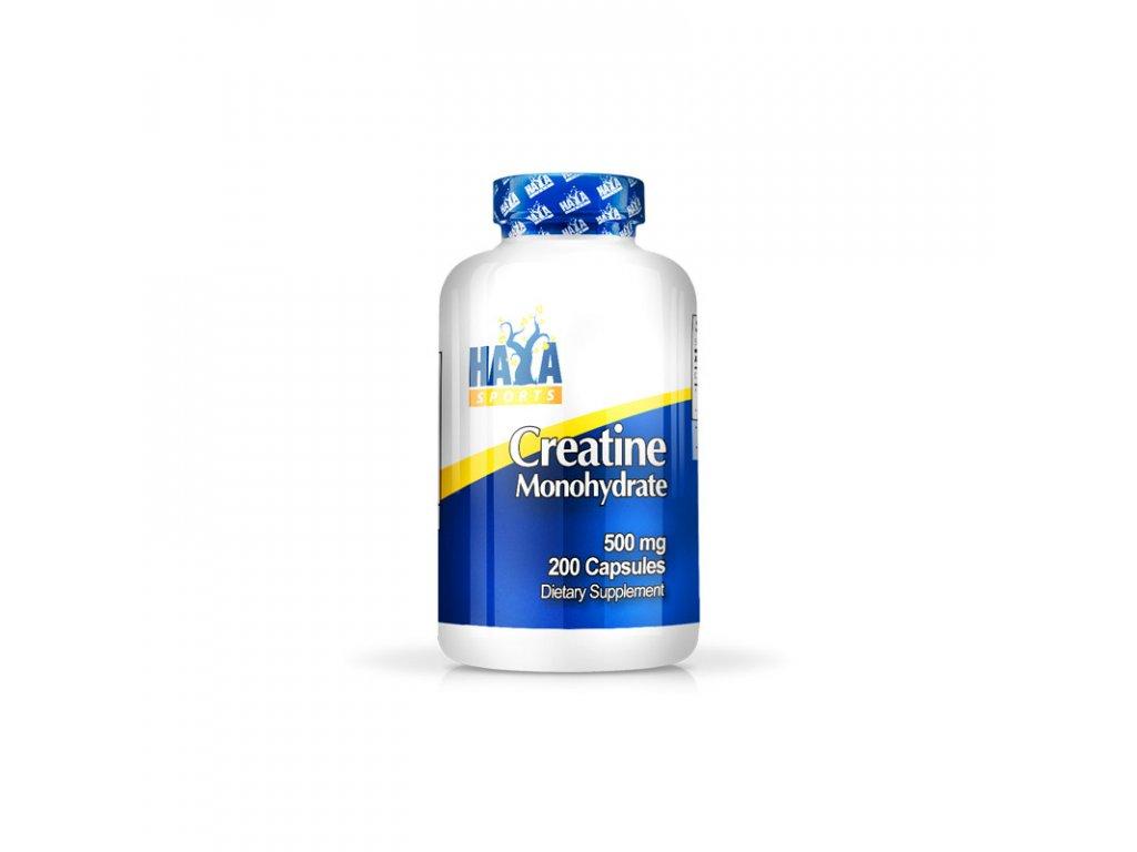 haya labs sports creatine monohydrate 500mg
