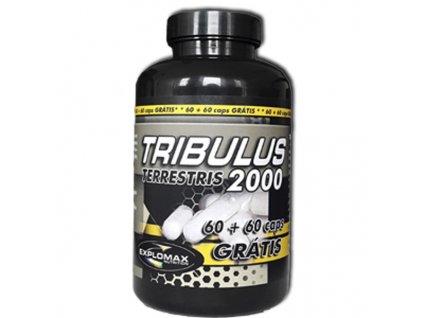 tribulus 2x60