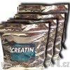 creatine 1200