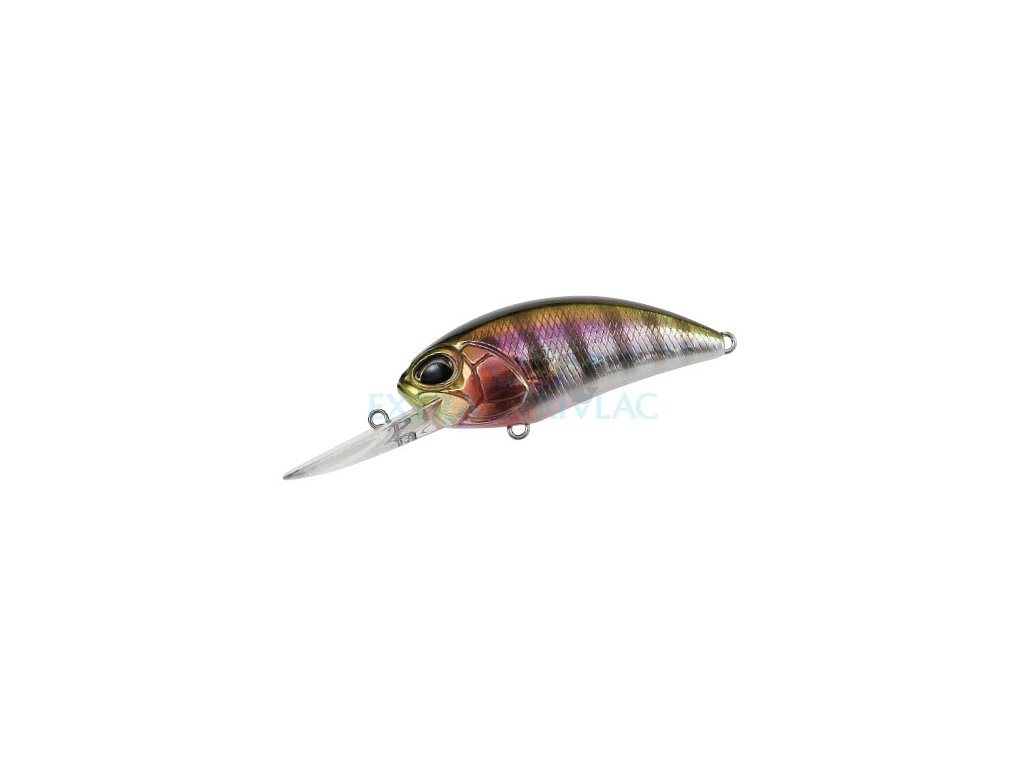 Prism Gill
