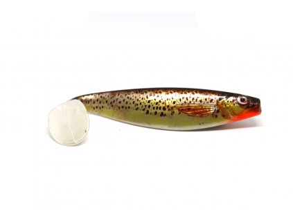Photo print shad brown trout 17cm