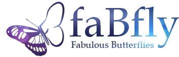 faBfly