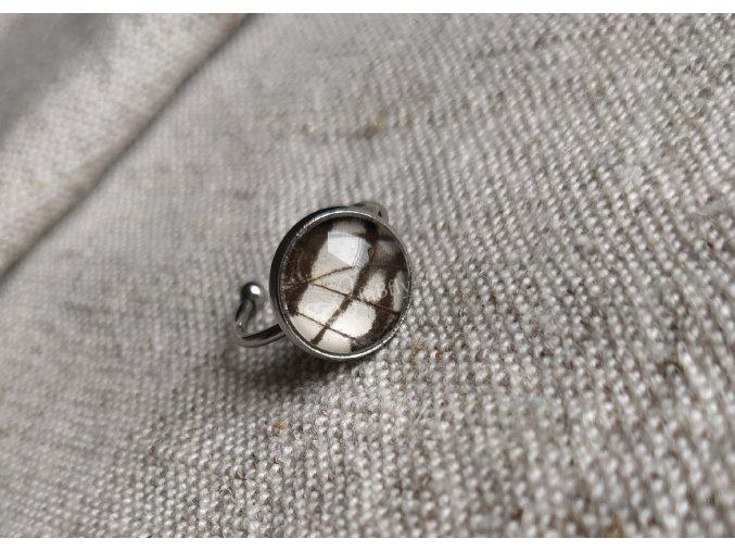 Prsteň s motýlím krídlom Graphium 12mm