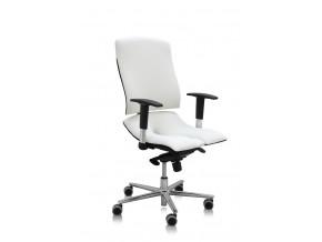ergonomicka kancelarska zidle asana steel standard 2