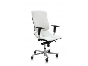 asana steel standard ergonomikus egeszsegmegorzo irodai szek 2