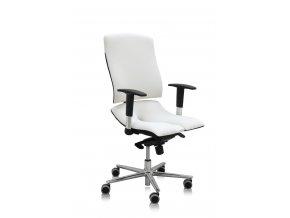 ergonomicka kancelarska stolicka asana steel standard 2