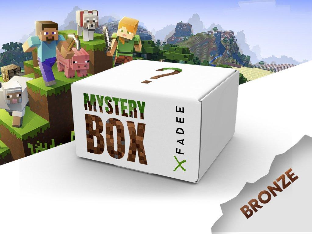Minecraft Mystery box bronze