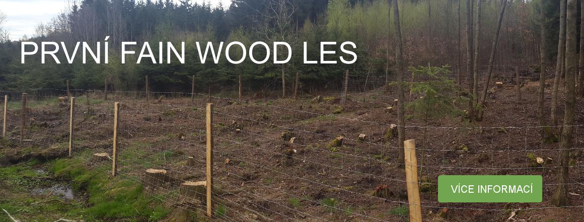 První Fain Wood les