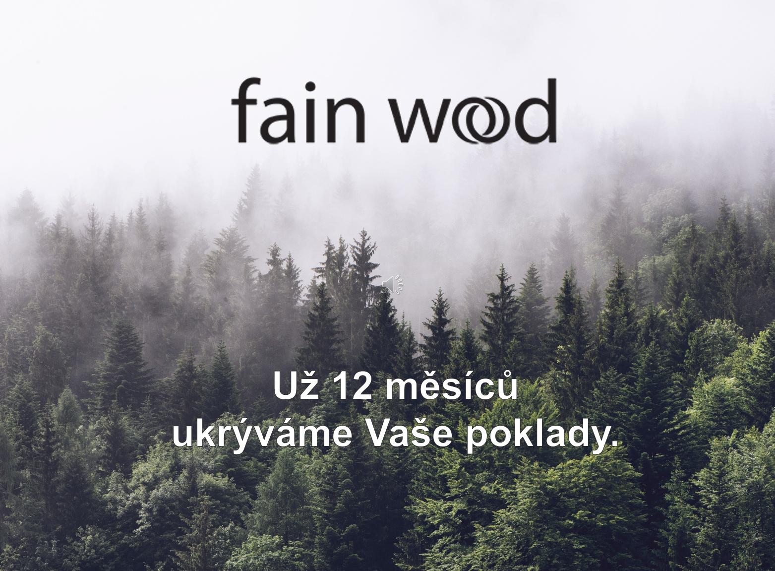 prvnirokfainwood