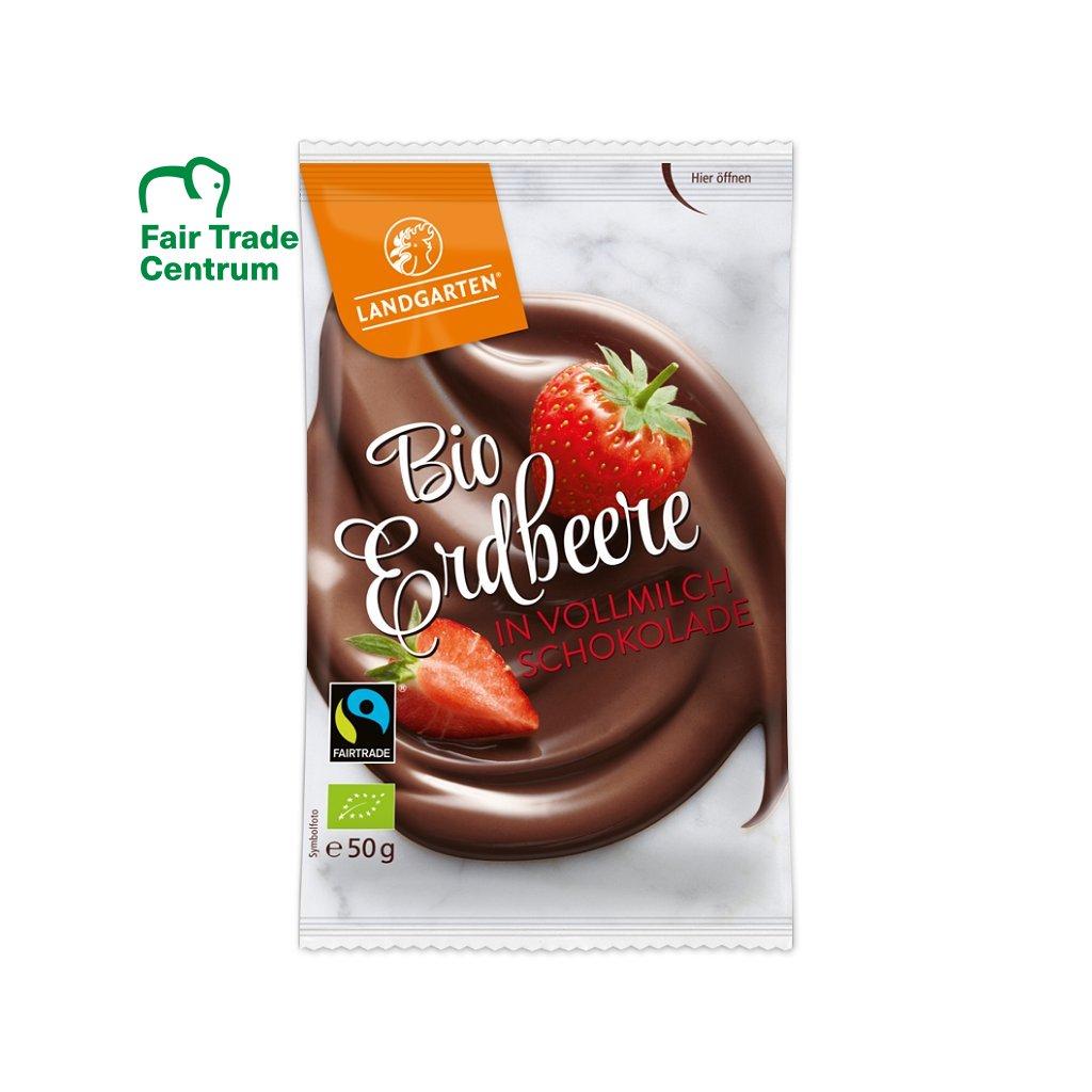 Fair trade bio sušené jahody v bio mléčné čokoládě