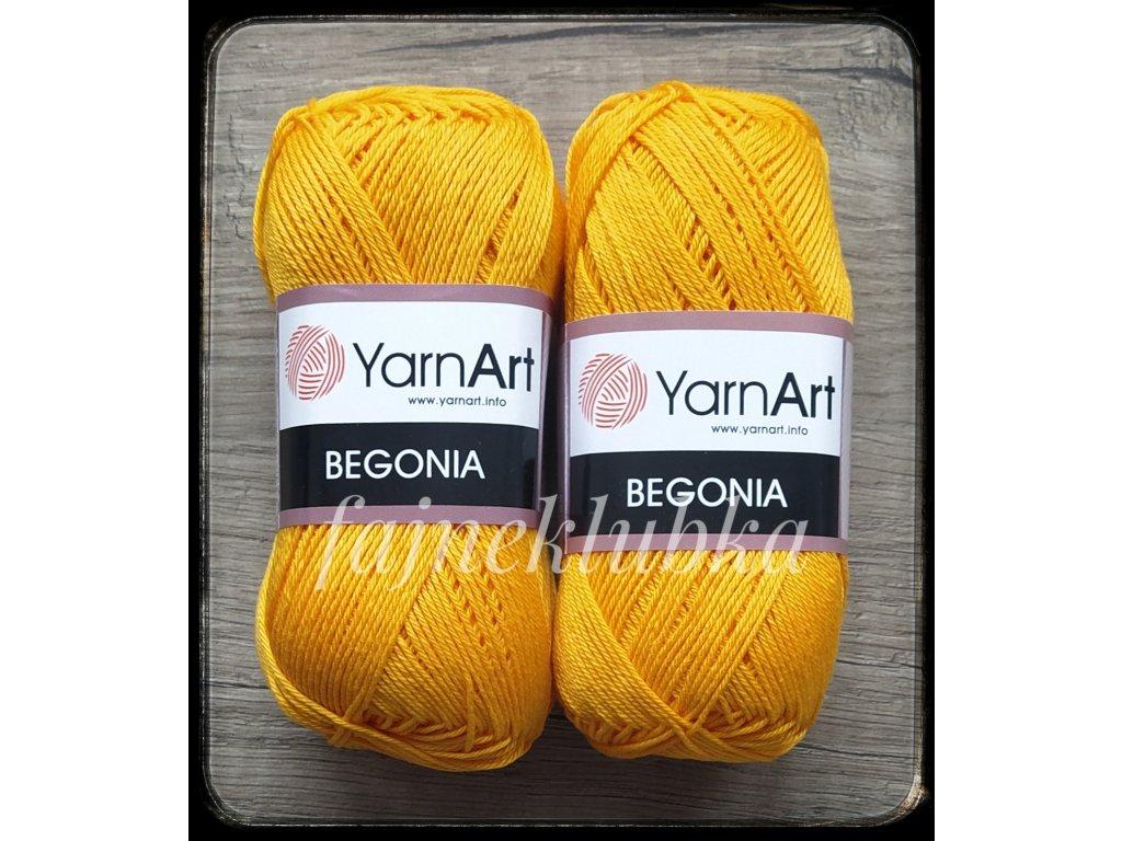 Begonia 5307 hořčicově žlutá