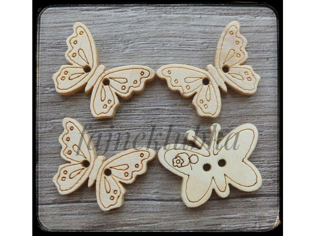Knoflík Motýl