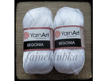 Begonia bílá