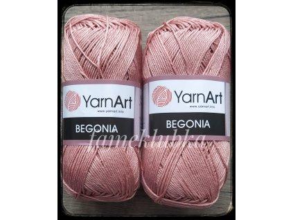 Begonia 4105 Starorůžová
