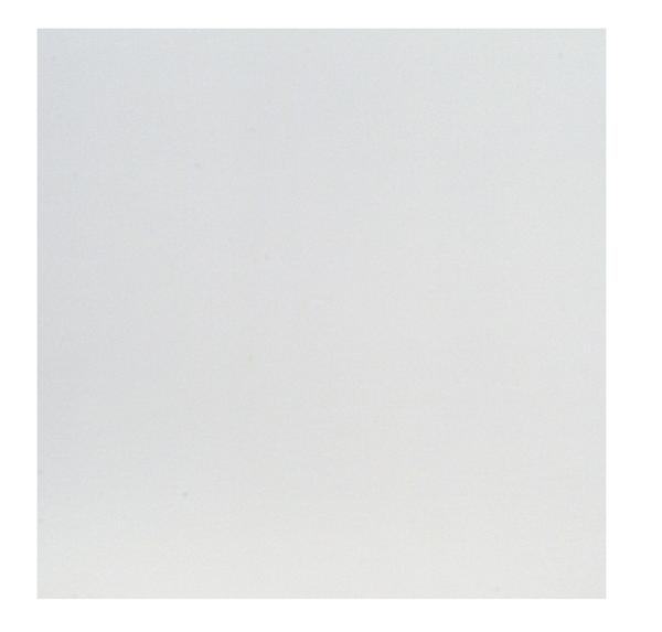 Sádrové stropní podhledy Rigips