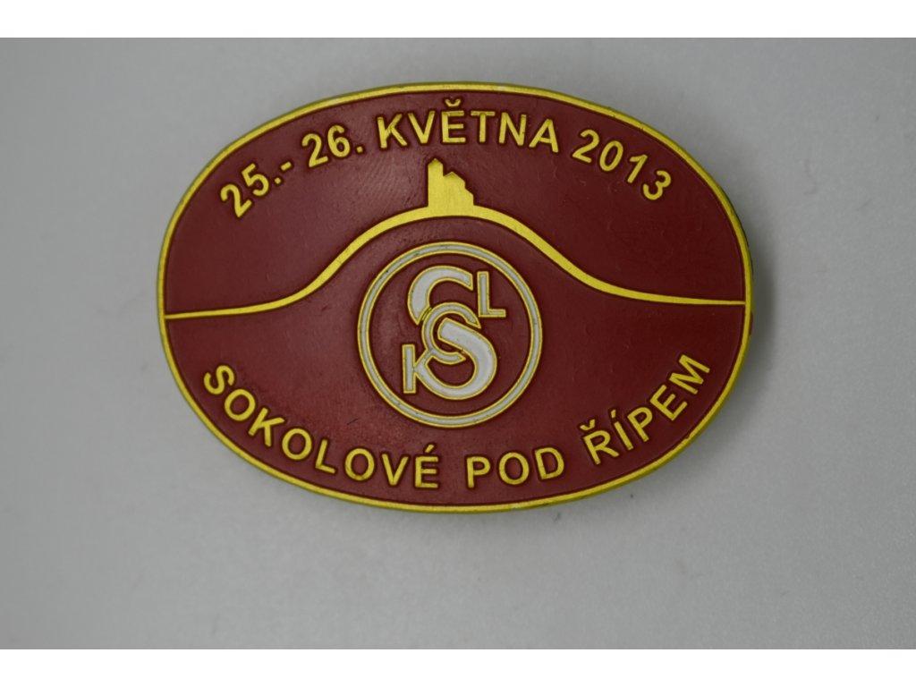 Sokolové pod Řípem 2013