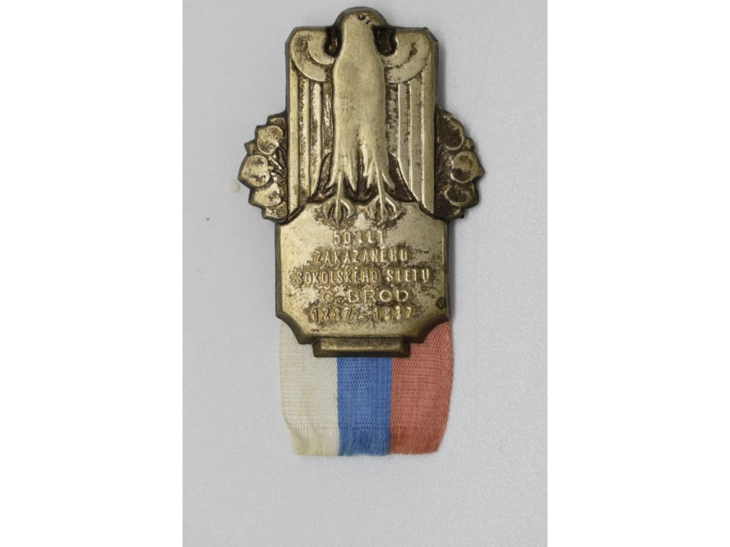 50 let zakázaného sokolského sletu Český Brod 1937
